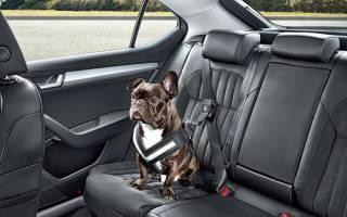 Как обеспечить комфорт и тишину Вашем автомобилю?